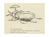 The Bountiful Beetle Giclée-Druck von Edward Lear
