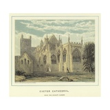 Exeter Cathedral, from the Bishop's Garden Giclee Print by John Francis Salmon