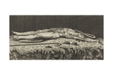 Abel, the First Victim Sacrificied to Envy Giclee Print by Henry Fuseli