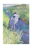 """The Lone Fisher"" Giclee Print by Frank Southgate"