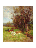 Cattle Grazing Giclee Print by Charles James Adams