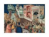 Entry of Christ into Jerusalem, 1320 Giclée-tryk af Pietro Lorenzetti