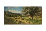 Thorn Trees on a Breconshire Hillside, 1904 Giclee Print by William Henry Davis