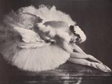 Anna Pavlova in 'The Swan' Photographic Print