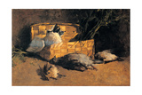 Still Life with Pigeons, 1884 Giclee Print by Gaetano Previati