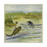 Fish and Fly Giclee Print by Ernest Henry Griset