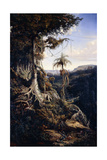 Jala-Jala Forest Giclee Print by Auguste Borget