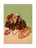 Two Monkeys Talking on a Telephone, C.1955 Giclee Print