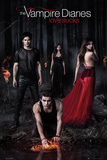 THE VAMPIRE DIARIES Woods Poster