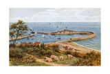 The Cobb, Lyme Regis, from Holmbush Giclee Print by Alfred Robert Quinton