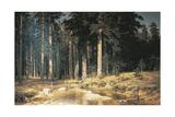 Forest, 1898 Reproduction procédé giclée par Ivan Ivanovitch Shishkin
