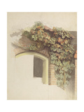 Grapevines on a Brick House, 1832 Giclee Print by Johann Martin Gensler