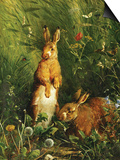 Hares Prints by Olaf August Hermansen