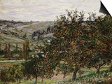 Apple Trees Near Vetheuil Posters by Claude Monet