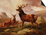 A Proud Stag Poster by Samuel John Carter