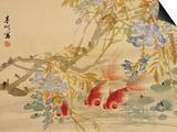 Poissons rouges Art par Ni Tian
