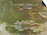 Lily Pond, 1881 Prints by Claude Monet