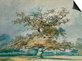 J. M. W. Turner - A Landscape with an Old Oak Tree Reprodukce