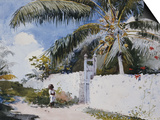 A Garden in Nassau, 1885 Prints by Winslow Homer