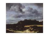 Wheat Fields Giclee Print by Jacob van Ruisdael