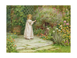 My Garden Giclee Print by William Ashburner
