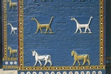 Detail of the Reconstruction of the Ishtar Gate Photographic Print