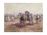The Potato Pickers Giclee Print by Harry Fidler