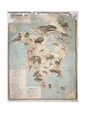 Map of Animals in North America Giclee Print by Janos Balint