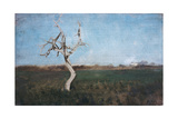 The Bare Tree Giclee Print by Giuseppe De Nittis