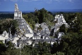 View of Temple V, Tikal National Park Photographic Print