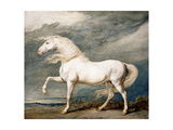 Adonis, King George III's Favourite Charger Giclee Print by James Ward