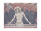 Cristo in Pieta, 1365-70 Giclee Print by Niccolo Di Tommaso