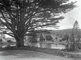 Gardens at Brinsop Court Photographic Print by Frederick Henry Evans