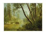 Sunlit Forest Giclée-tryk af Albert Bierstadt