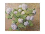 Blue Hydrangeas Giclee Print by Henri Lerolle