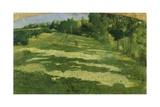 Green Glen, 1891 Giclee Print by Giuseppe Pelizza da volpedo