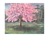 Pink Blossom, 1994 Giclee Print by Liz Wright