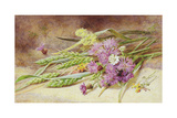 Green Wheat and Wild Flowers Giclee Print by Helen Cordelia Coleman Angell