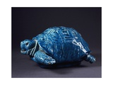 Blue Turtle Giclee Print by Clement Massier