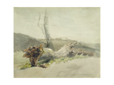 The Fallen Tree, C.1804 Giclee Print by Robert Hills