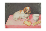 Portrait of a Dog Giclee Print by Giovanna Garzoni