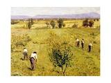 Harvest Giclee Print by Guglielmo Ciardi