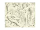 Adam and Eve Giclee Print by Frans The Elder Floris