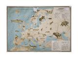 Map of Animals in Europe Impression giclée par Janos Balint