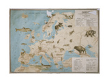 Map of Animals in Europe Giclee Print by Janos Balint