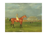 Memnon' with William Scott Up, 1825 Giclee Print by John Frederick Herring Snr