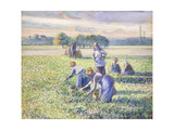 The Harvest of Peas, 1887 Reproduction procédé giclée par Camille Pissarro