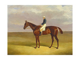 Margrave' with James Robinson Up, 1833 Giclee Print by John Frederick Herring Snr