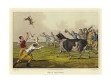 Bull Baiting Giclee Print by Henry Thomas Alken