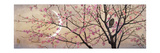 Primavera, 1877 Impression giclée par Charles Caryl Coleman